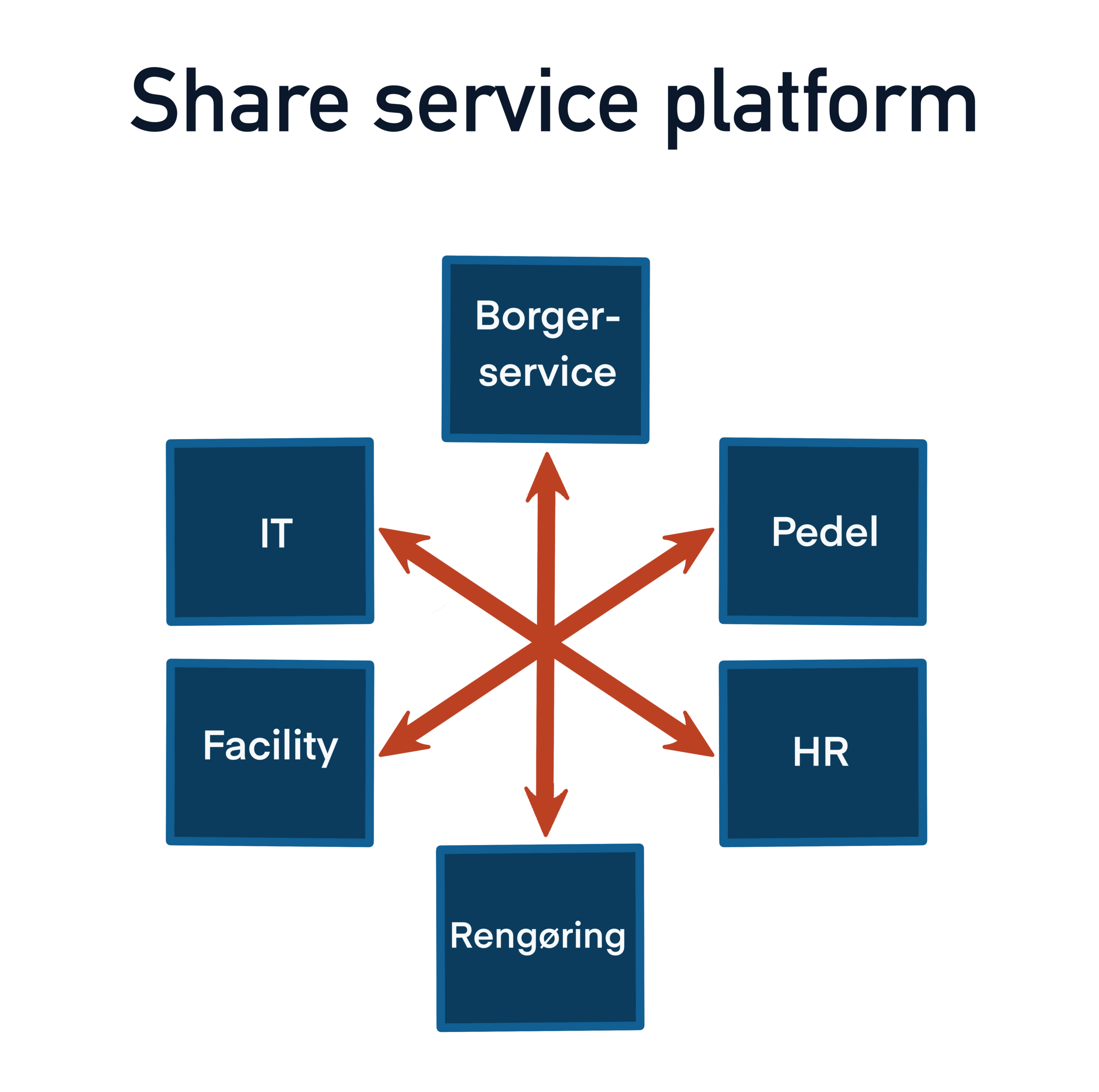 shared service platform infrasoft illustration